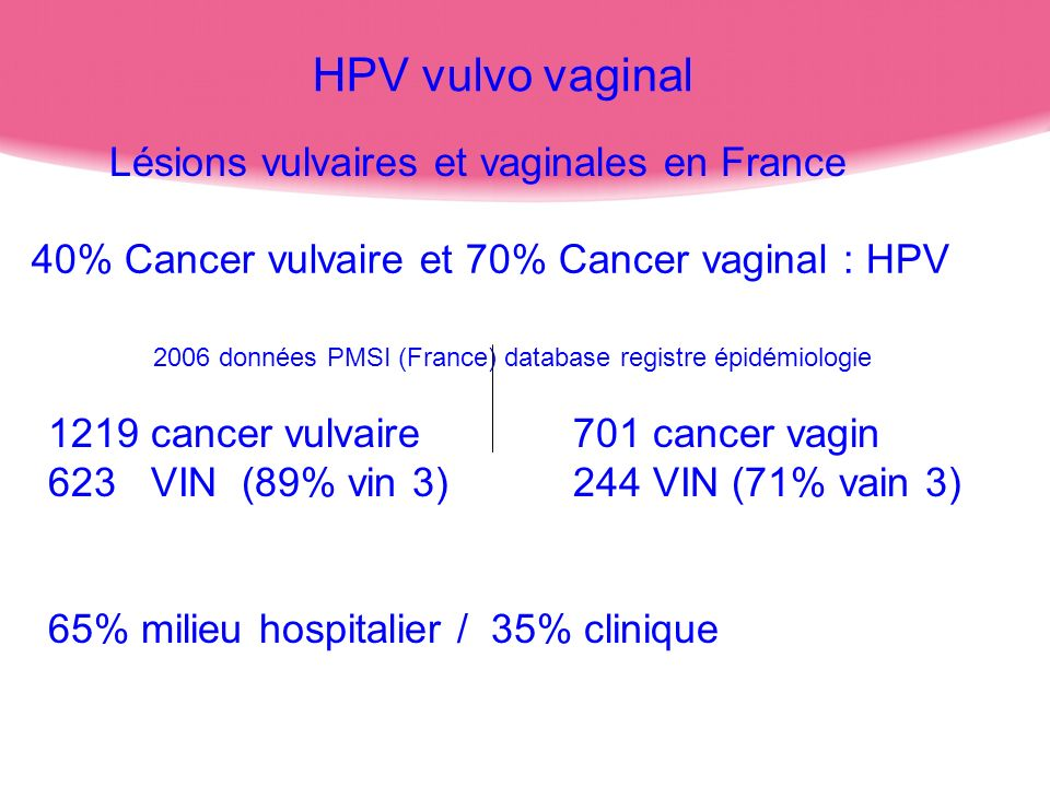Lésions vulvaires et vaginales en France 2006 données PMSI (France) database registre épidémiologie 1219 cancer vulvaire701 cancer vagin 623 VIN (89%