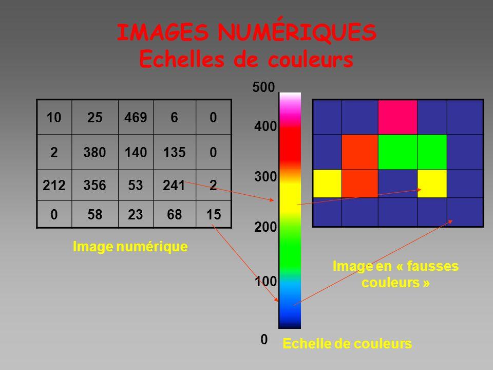 IMAGES NUMÉRIQUES Echelles de couleurs 102546960 23801401350 212356532412 058236815 Image numérique Echelle de couleurs 100 200 300 400 0 500 Image en