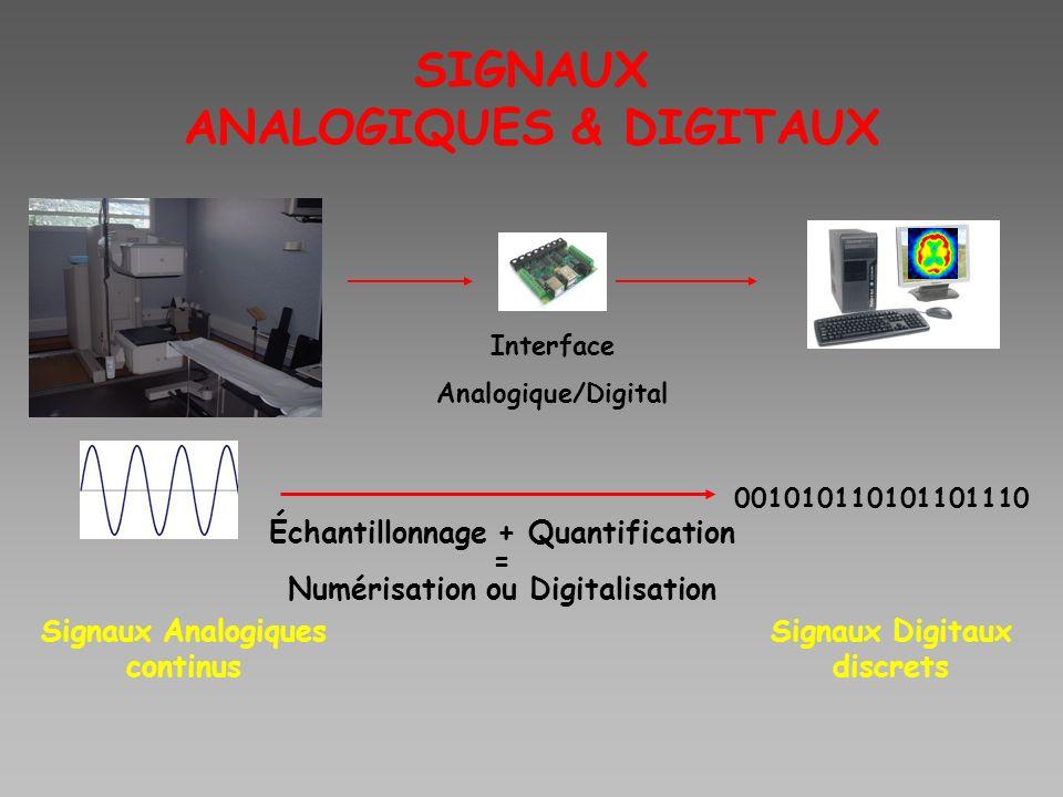SIGNAUX ANALOGIQUES & DIGITAUX Interface Analogique/Digital Échantillonnage + Quantification = Numérisation ou Digitalisation 001010110101101110 Signa