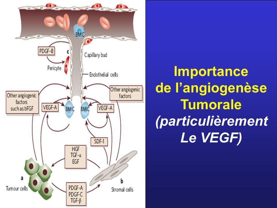 Importance de langiogenèse Tumorale (particulièrement Le VEGF)