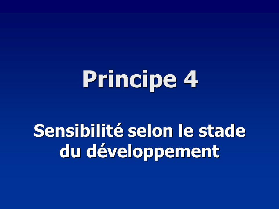 Principe 4 Sensibilité selon le stade du développement