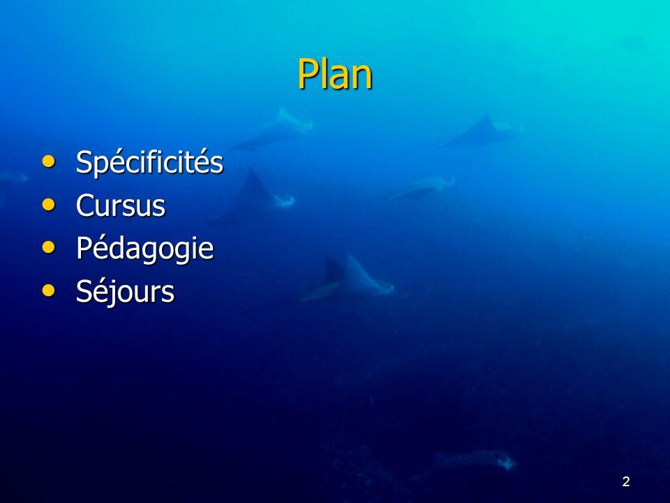 2 Plan Spécificités Spécificités Cursus Cursus Pédagogie Pédagogie Séjours Séjours
