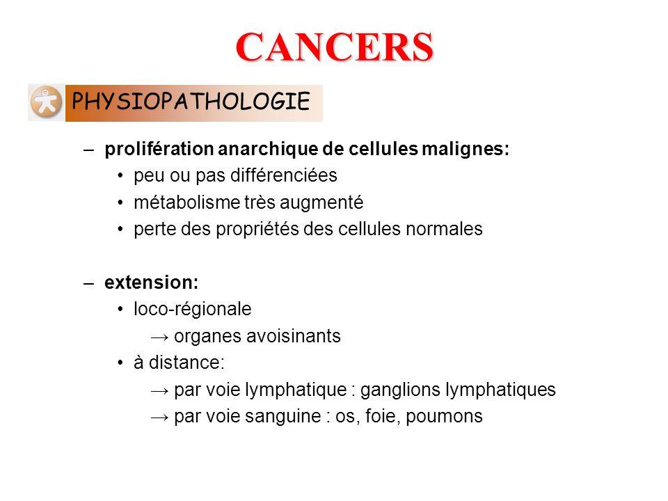 –prolifération anarchique de cellules malignes: peu ou pas différenciées métabolisme très augmenté perte des propriétés des cellules normales –extensi