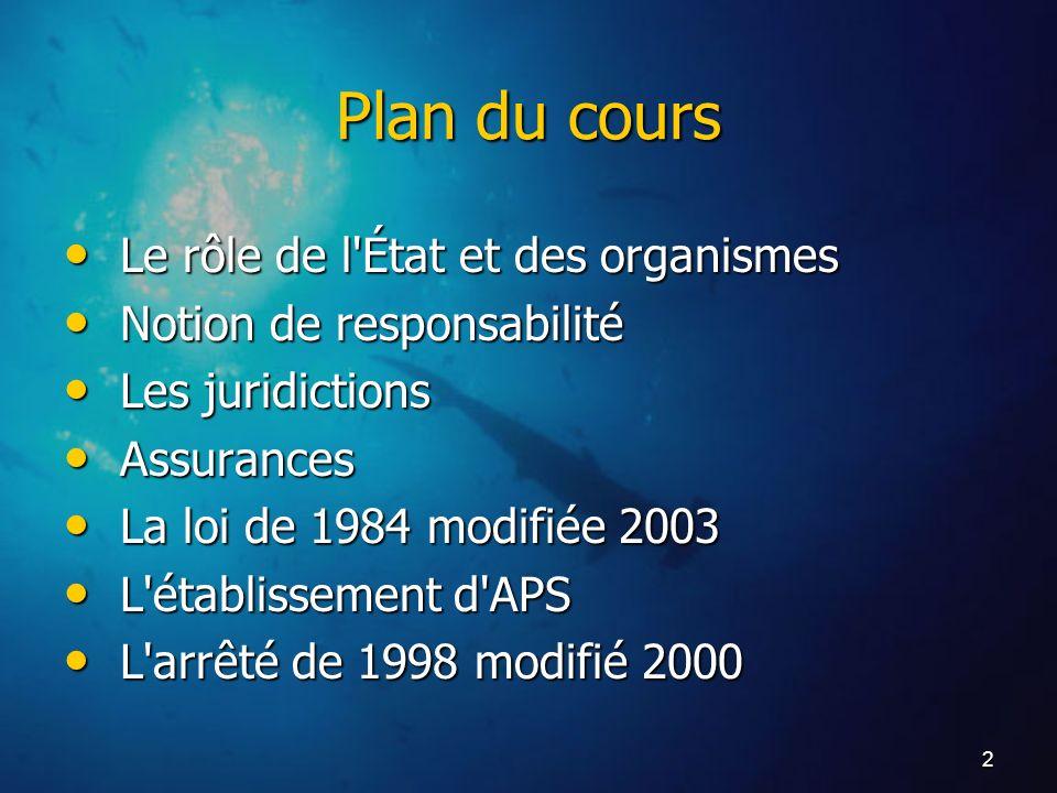 2 Plan du cours Le rôle de l'État et des organismes Le rôle de l'État et des organismes Notion de responsabilité Notion de responsabilité Les juridict