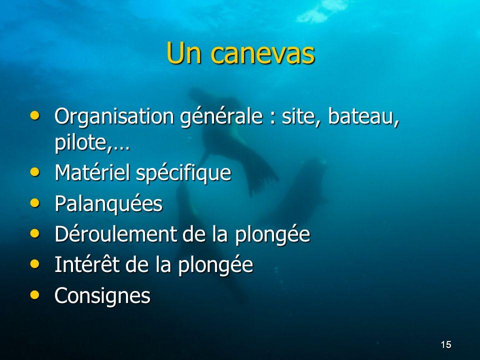 15 Un canevas Organisation générale : site, bateau, pilote,… Organisation générale : site, bateau, pilote,… Matériel spécifique Matériel spécifique Pa