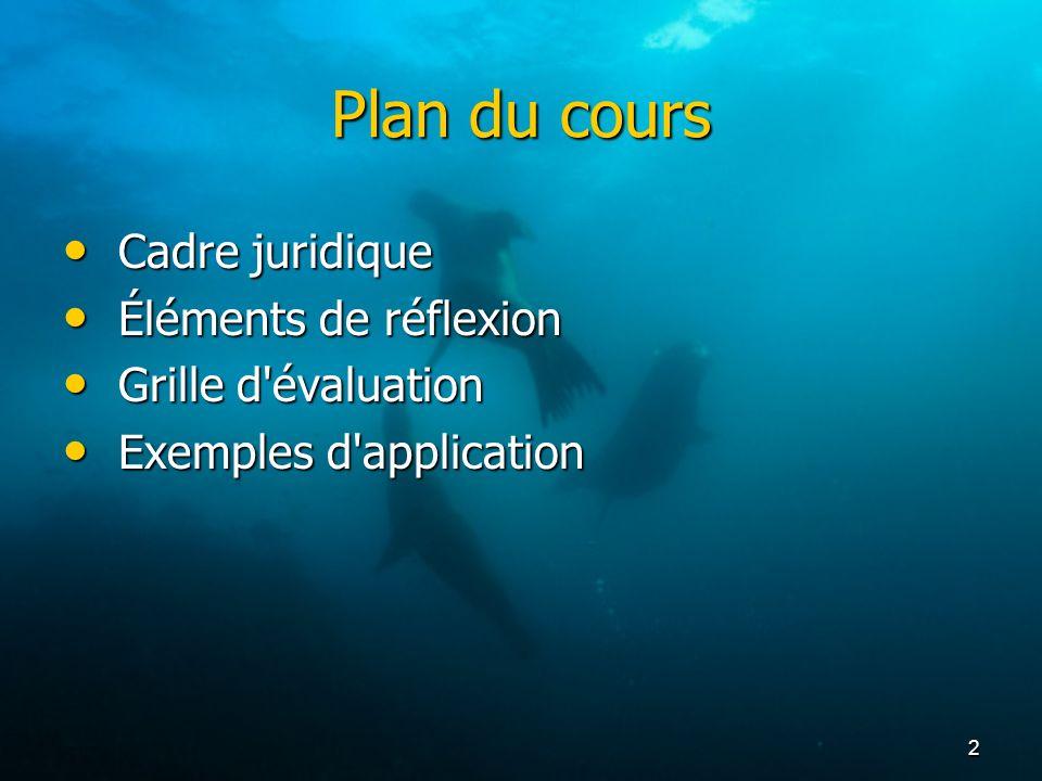 2 Plan du cours Cadre juridique Cadre juridique Éléments de réflexion Éléments de réflexion Grille d'évaluation Grille d'évaluation Exemples d'applica