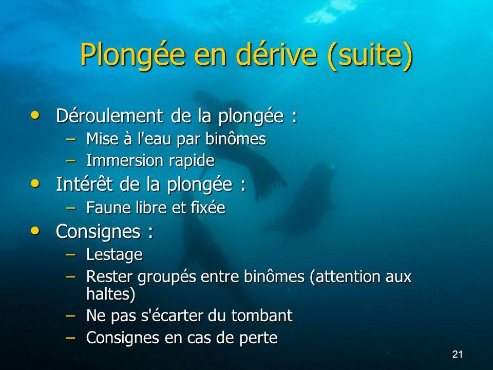 21 Plongée en dérive (suite) Déroulement de la plongée : Déroulement de la plongée : –Mise à l'eau par binômes –Immersion rapide Intérêt de la plongée