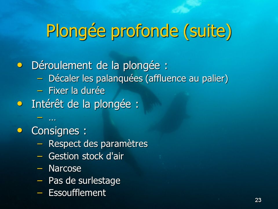 23 Plongée profonde (suite) Déroulement de la plongée : Déroulement de la plongée : –Décaler les palanquées (affluence au palier) –Fixer la durée Inté