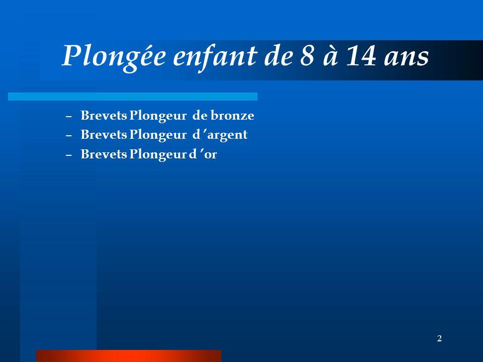 2 Plongée enfant de 8 à 14 ans – Brevets Plongeur de bronze – Brevets Plongeur d argent – Brevets Plongeur d or