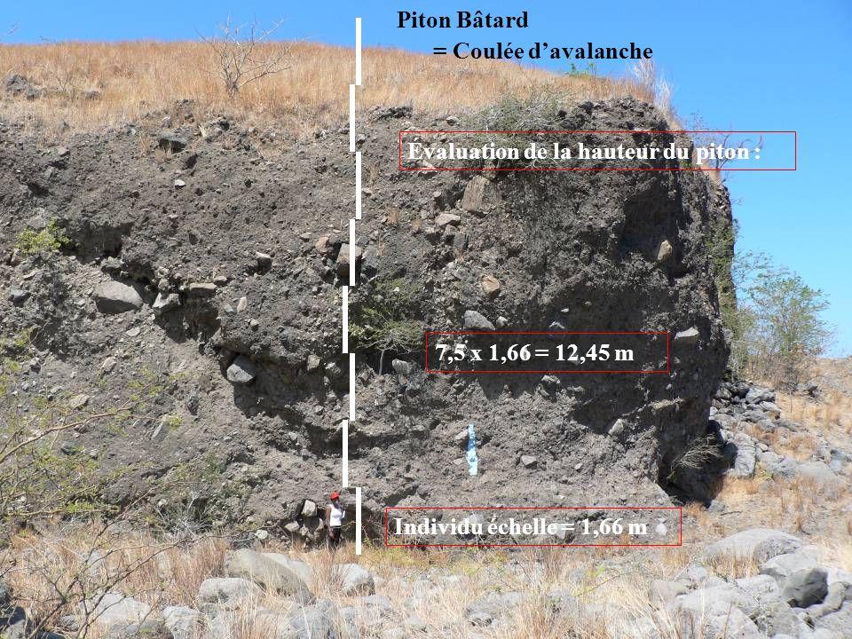 Piton Bâtard = Coulée davalanche Évaluation de la hauteur du piton : Individu échelle = 1,66 m 7,5 x 1,66 = 12,45 m