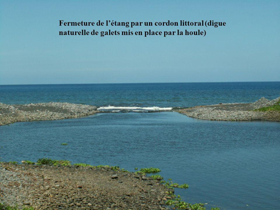 Fermeture de létang par un cordon littoral (digue naturelle de galets mis en place par la houle)