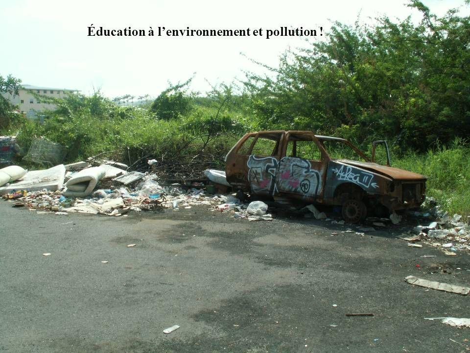 Éducation à lenvironnement et pollution !