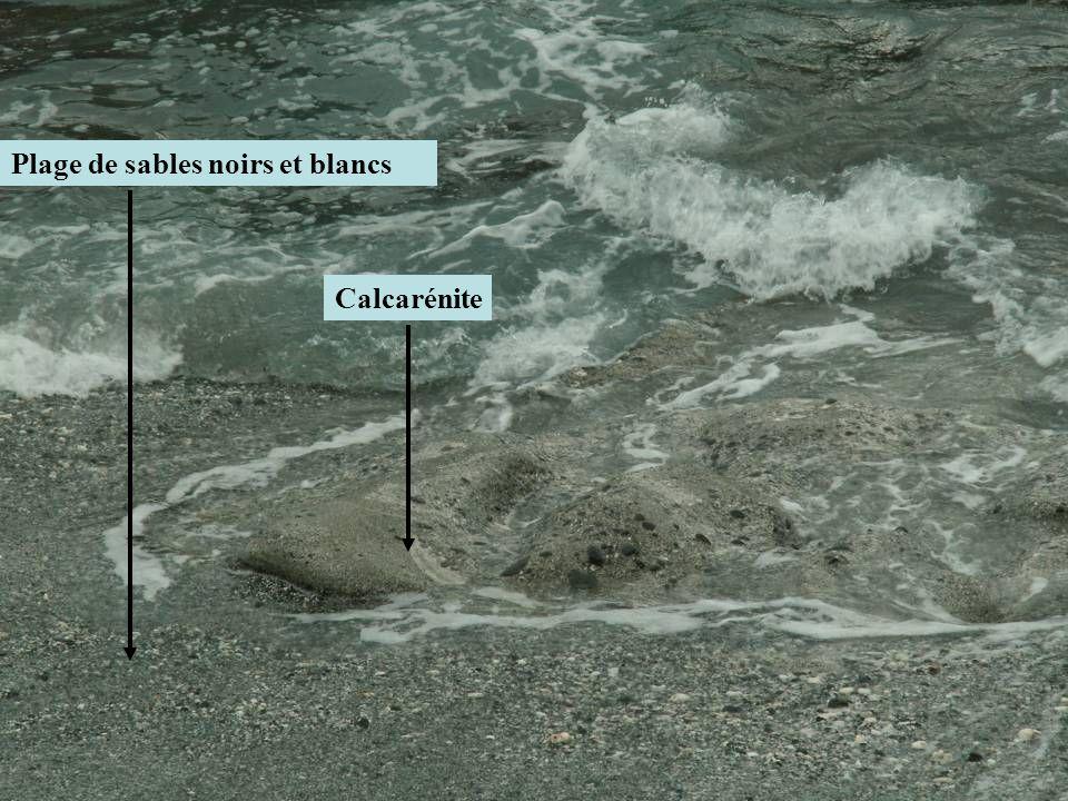 Plage de sables noirs et blancs Calcarénite