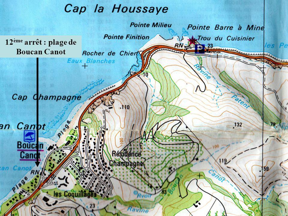 12 ème arrêt : plage de Boucan Canot