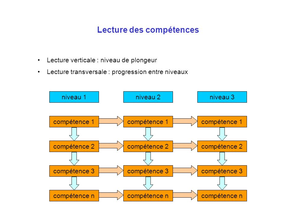 Lecture des compétences Lecture verticale : niveau de plongeur Lecture transversale : progression entre niveaux niveau 1 compétence 1 compétence 2 com
