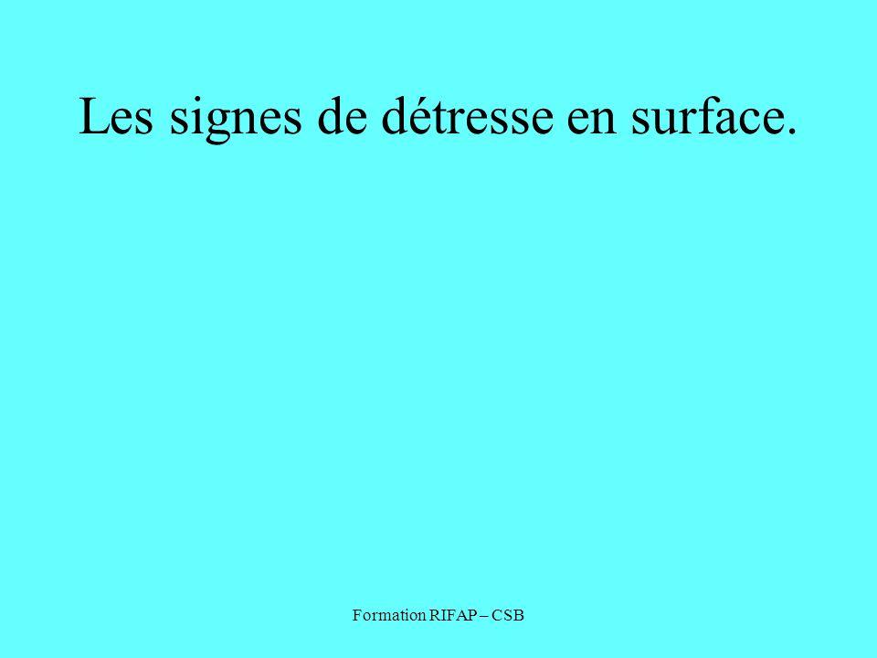 Formation RIFAP – CSB Les signes de détresse en surface.