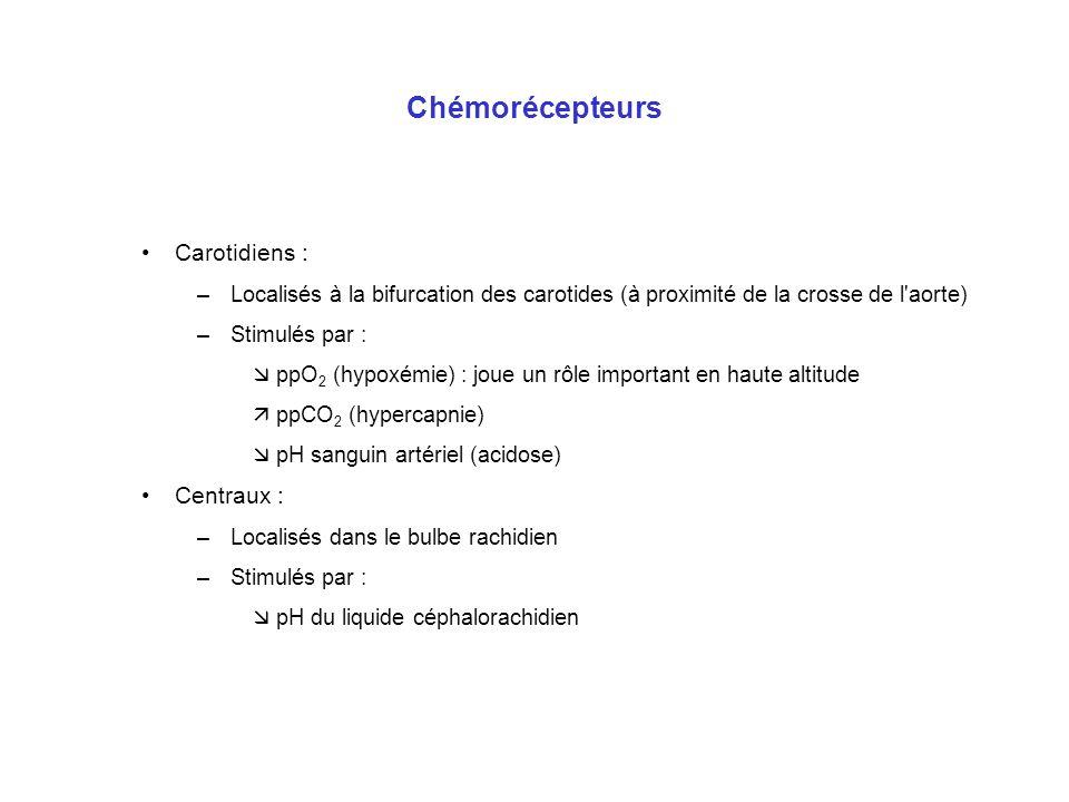 Chémorécepteurs Carotidiens : –Localisés à la bifurcation des carotides (à proximité de la crosse de l'aorte) –Stimulés par : ppO 2 (hypoxémie) : joue