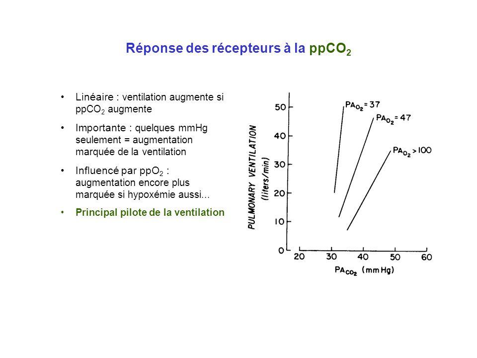 Réponse des récepteurs à la ppCO 2 Linéaire : ventilation augmente si ppCO 2 augmente Importante : quelques mmHg seulement = augmentation marquée de l