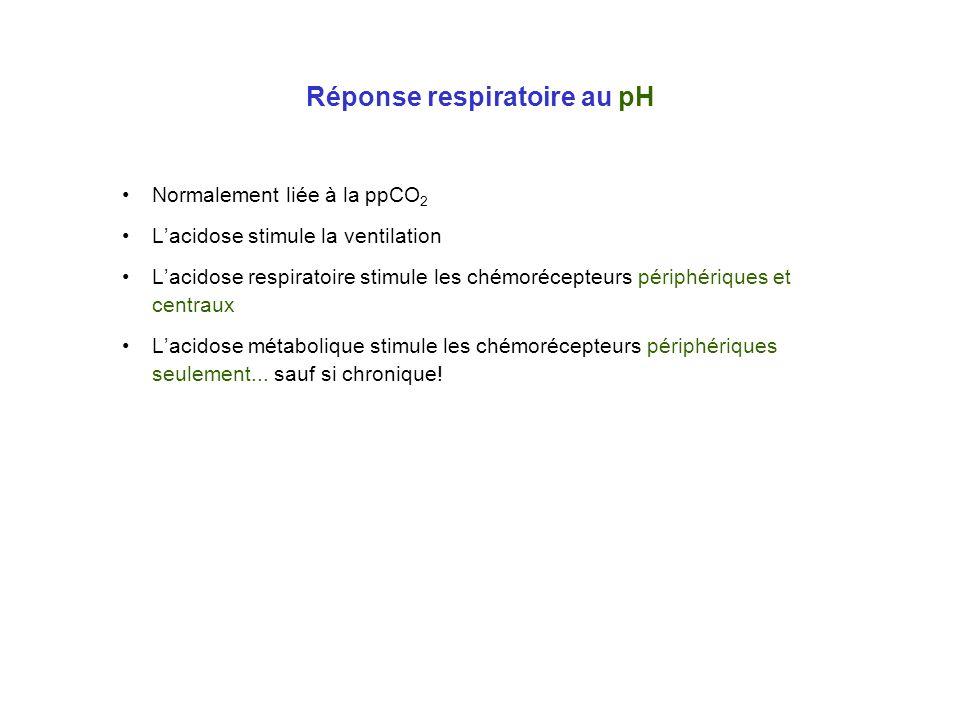 Réponse respiratoire au pH Normalement liée à la ppCO 2 Lacidose stimule la ventilation Lacidose respiratoire stimule les chémorécepteurs périphérique