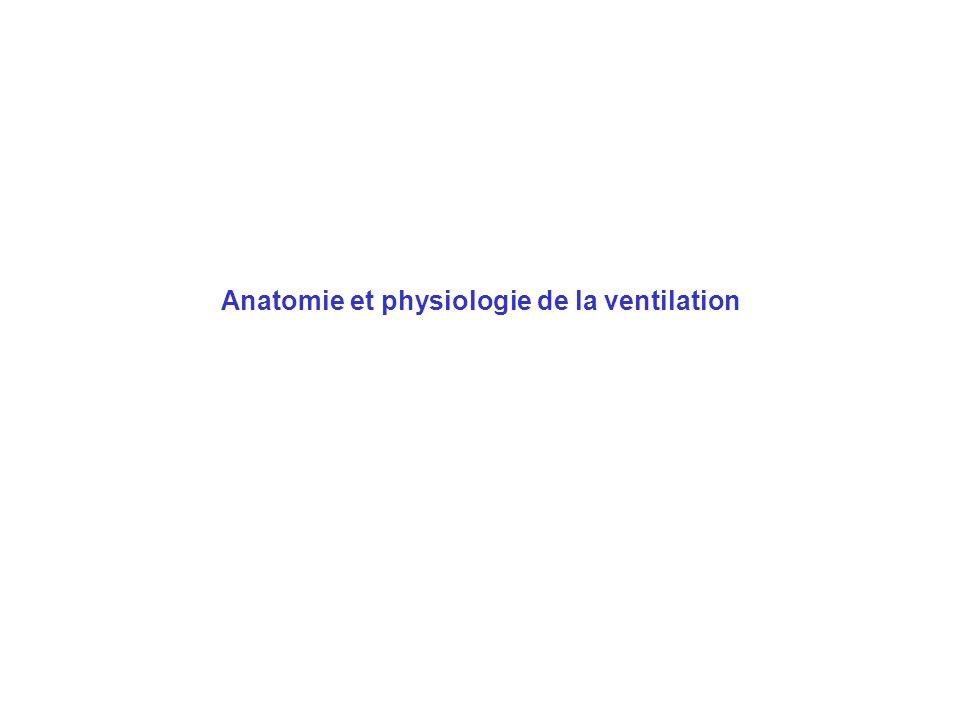 Anatomie et physiologie de la ventilation