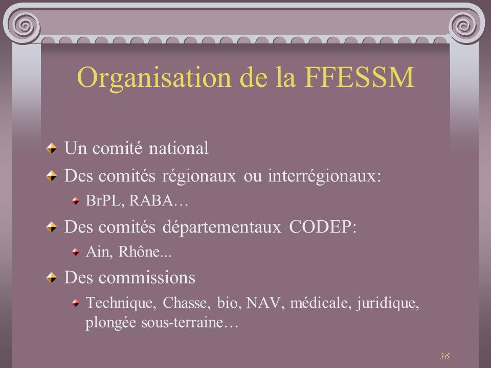36 Organisation de la FFESSM Un comité national Des comités régionaux ou interrégionaux: BrPL, RABA… Des comités départementaux CODEP: Ain, Rhône... D