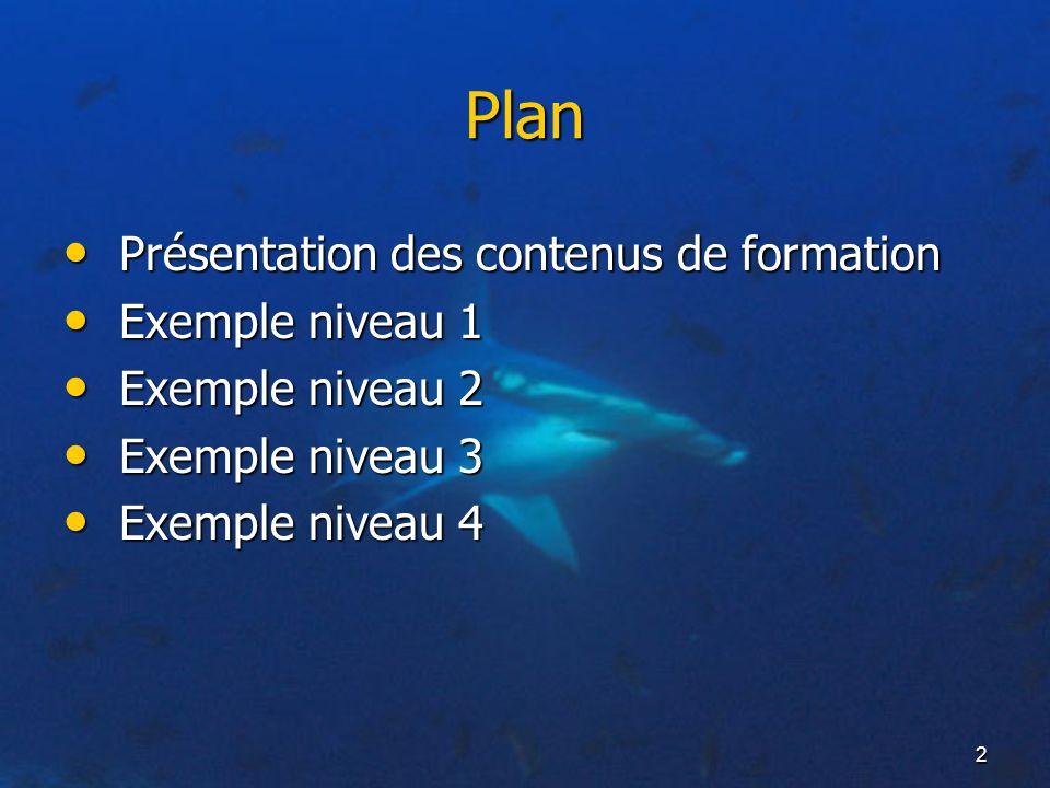 2 Plan Présentation des contenus de formation Présentation des contenus de formation Exemple niveau 1 Exemple niveau 1 Exemple niveau 2 Exemple niveau