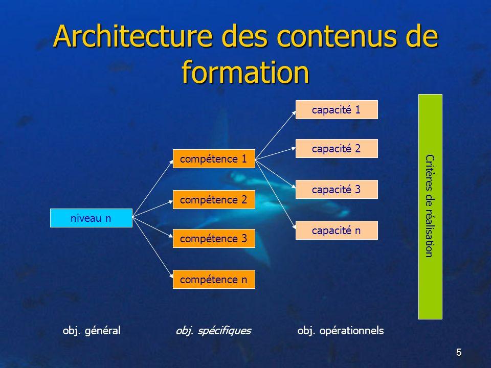 5 Architecture des contenus de formation niveau n compétence 1 compétence 2 compétence 3 compétence n capacité 1 capacité 2 capacité 3 capacité n Crit