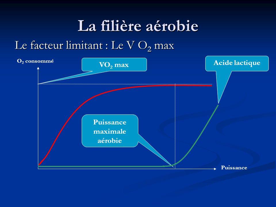 La filière aérobie Le facteur limitant : Le V O 2 max VO 2 max O 2 consommé Puissance Puissance maximale aérobie Acide lactique