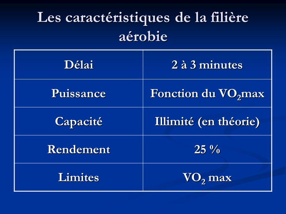 Les caractéristiques de la filière aérobie Délai 2 à 3 minutes Puissance Fonction du VO 2 max Capacité Illimité (en théorie) Rendement 25 % Limites VO
