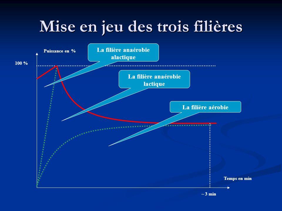 Mise en jeu des trois filières Puissance en % Temps en min 100 % La filière anaérobie alactique La filière anaérobie lactique La filière aérobie ~ 3 m