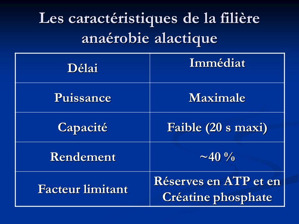 Les caractéristiques de la filière anaérobie alactique Délai Immédiat PuissanceMaximale Capacité Faible (20 s maxi) Rendement ~40 % Facteur limitant R