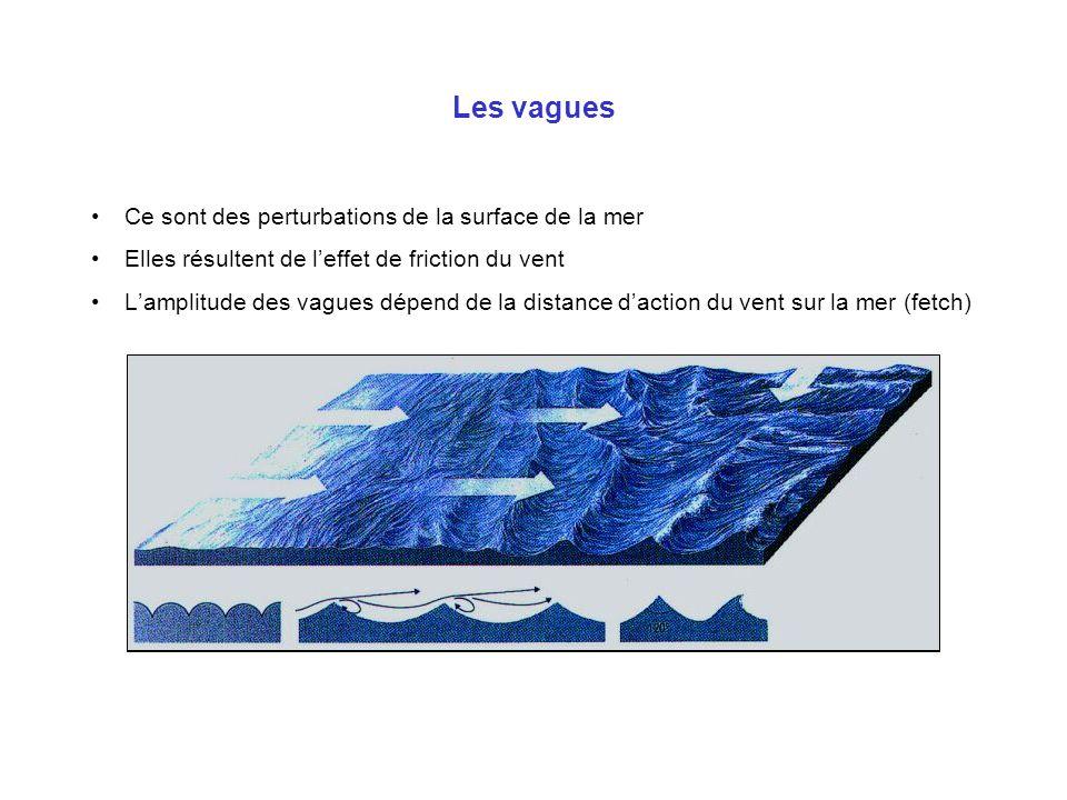 Les vagues Ce sont des perturbations de la surface de la mer Elles résultent de leffet de friction du vent Lamplitude des vagues dépend de la distance