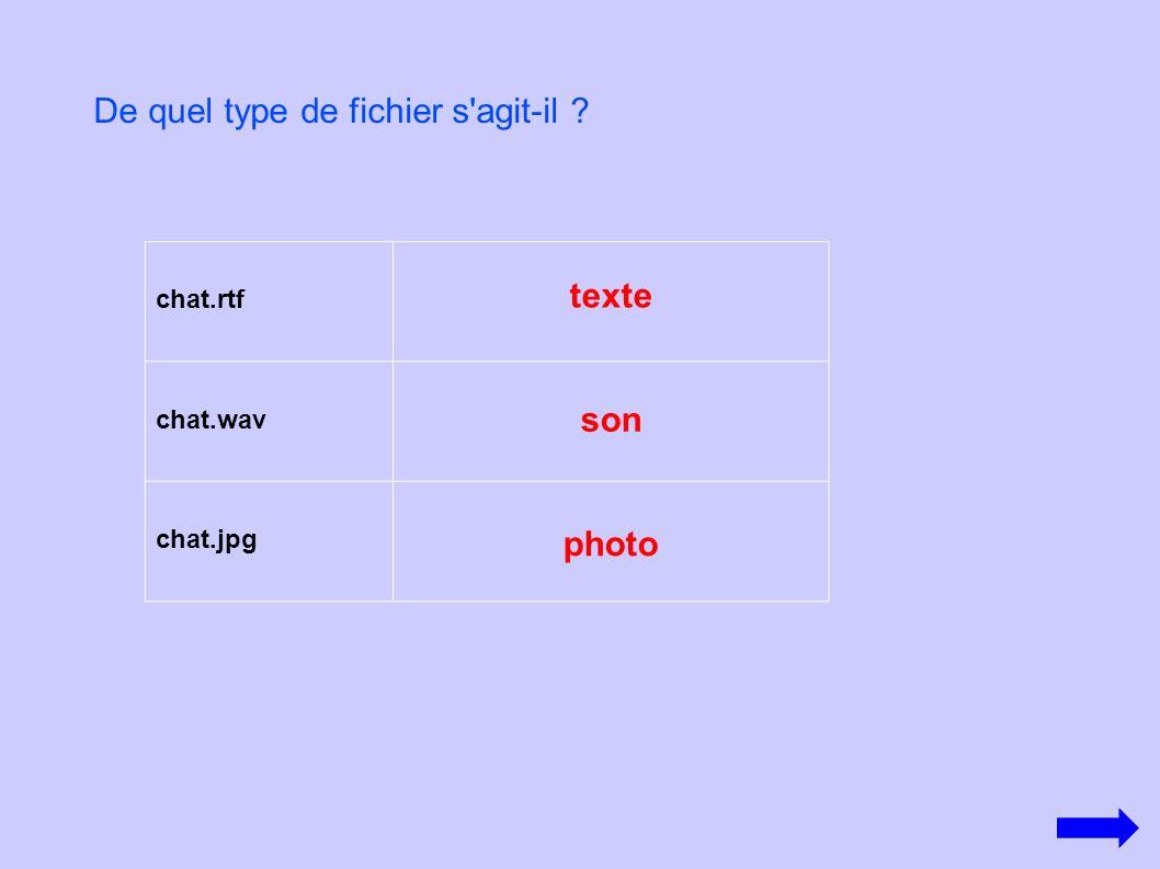 chat.rtf chat.wav chat.jpg De quel type de fichier s'agit-il ? photo son texte