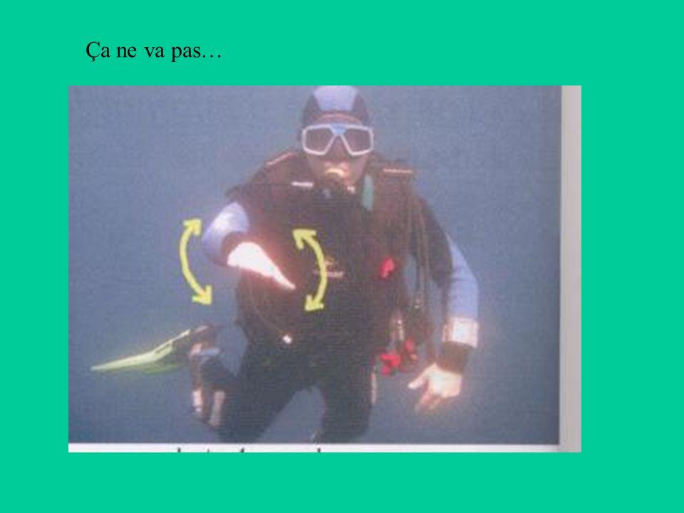 3 - Récupération des plongeurs de la palanquée Prise en charge des palanquées encore en immersion Recueillir des informations sur les é quipes encore à leau (nombre, temps d e plongée, paliers à effectuer etc...).