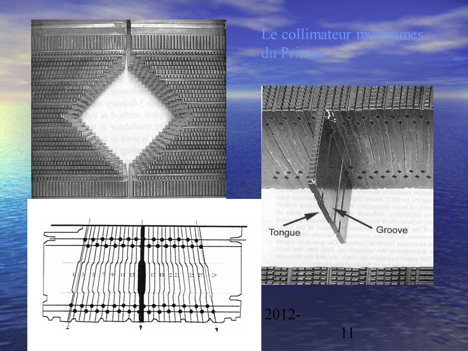 Physique/CAL 2012- 201311 Le collimateur multilames du Primus