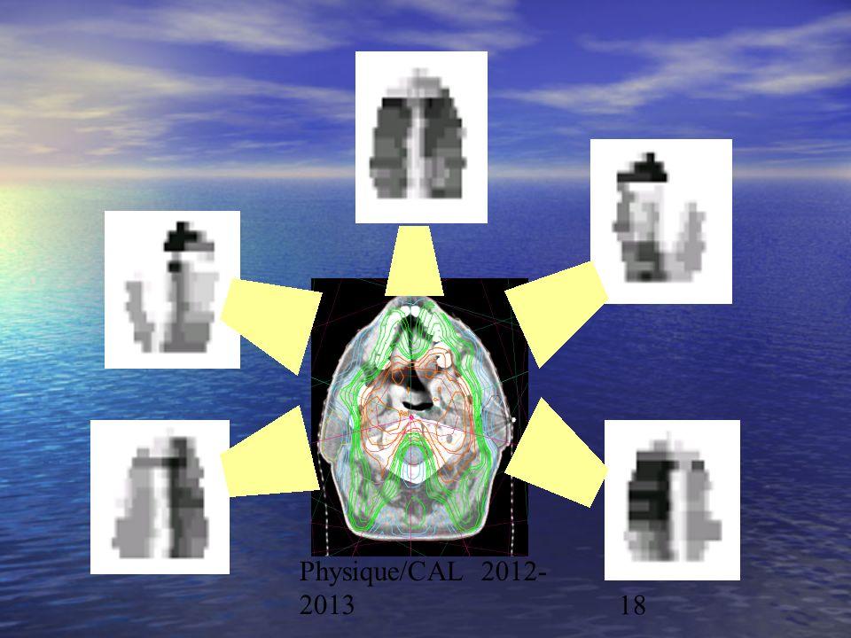 Physique/CAL 2012- 201318