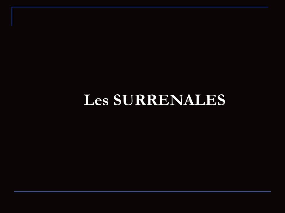 Les SURRENALES