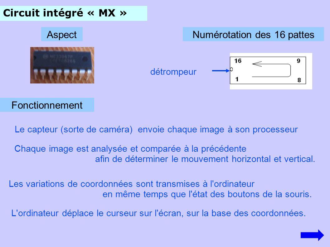 Circuit intégré « MX » AspectNumérotation des 16 pattes détrompeur Fonctionnement Le capteur (sorte de caméra) envoie chaque image à son processeur Chaque image est analysée et comparée à la précédente afin de déterminer le mouvement horizontal et vertical.