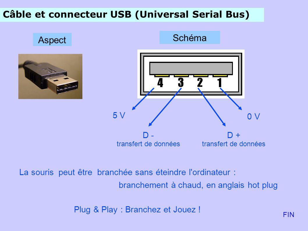 Câble et connecteur USB (Universal Serial Bus) 0 V D + transfert de données D - transfert de données 5 V Aspect Schéma La souris peut être branchée sans éteindre l ordinateur : branchement à chaud, en anglais hot plug Plug & Play : Branchez et Jouez .