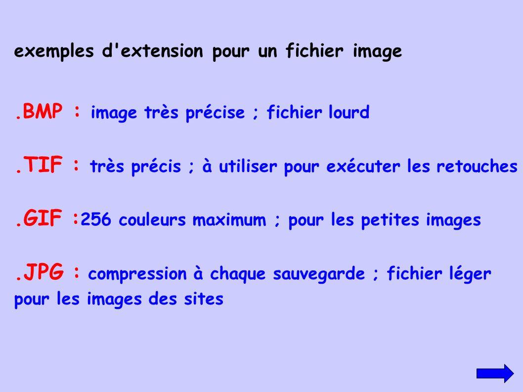 exemples d'extension pour un fichier image.BMP : image très précise ; fichier lourd.TIF : très précis ; à utiliser pour exécuter les retouches.GIF : 2