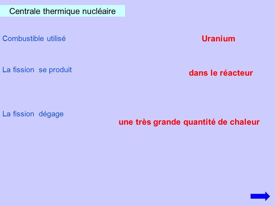 Les déchets à vie courte restent radioactifs jusqu à des milliers d années pendant 300 ans Les déchets à vie longue restent radioactifs Les déchets produits par ce type centrale sont radioactifs 1er pays producteur d énergie nucléaire : les USA 2ème pays producteur d énergie nucléaire : la France Plus AUCUNE centrale nucléaire en fonctionnement SUR LE TERRITOIRE ITALIEN.