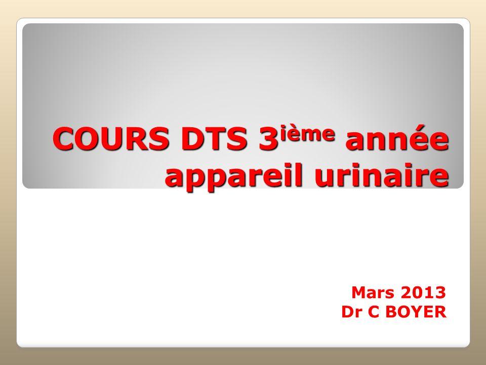 COURS DTS 3 ième année appareil urinaire Mars 2013 Dr C BOYER