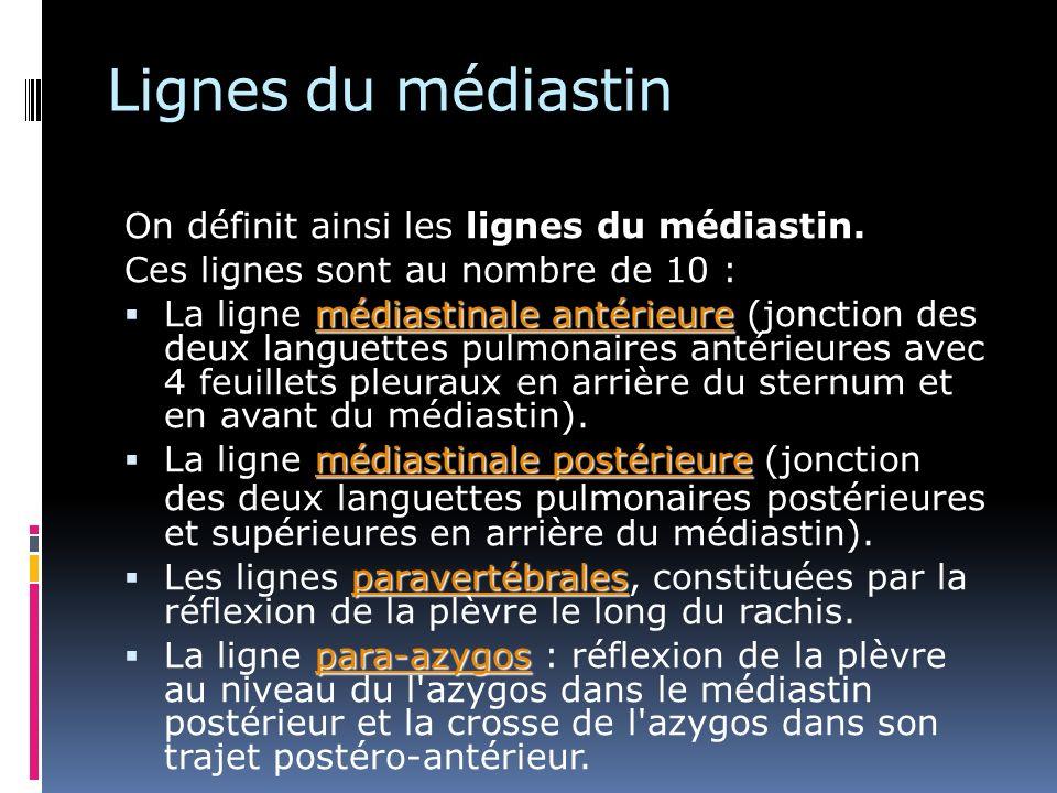 Lignes du médiastin On définit ainsi les lignes du médiastin. Ces lignes sont au nombre de 10 : médiastinale antérieure La ligne médiastinale antérieu
