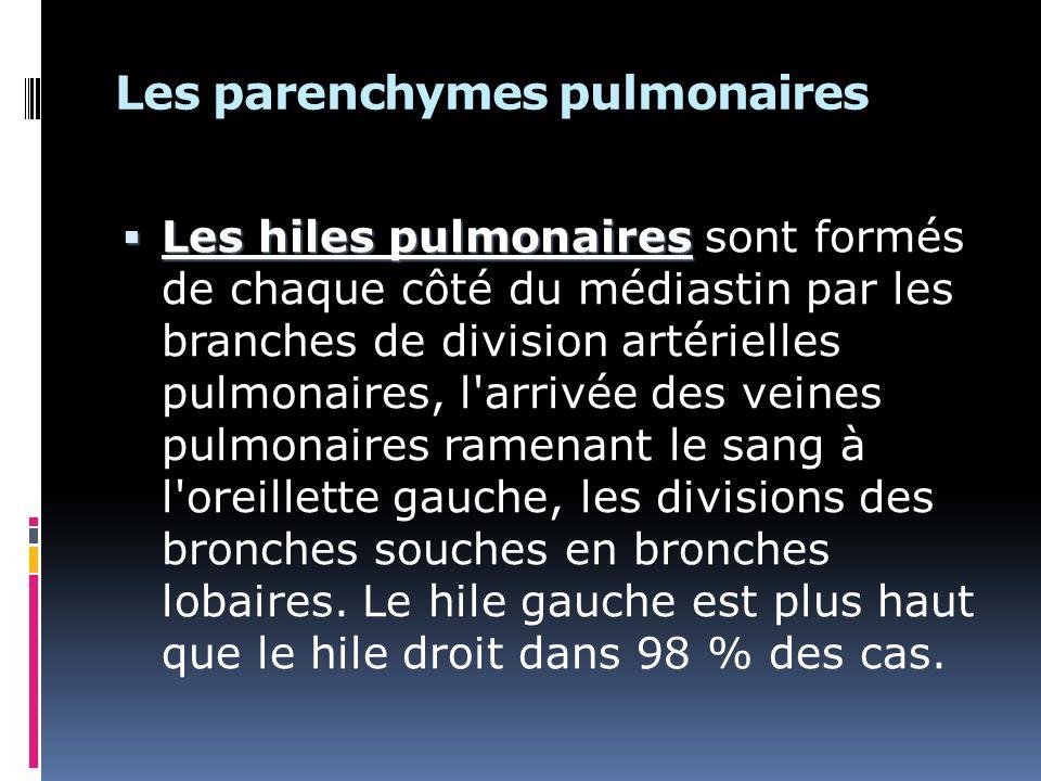 Les parenchymes pulmonaires Les hiles pulmonaires Les hiles pulmonaires sont formés de chaque côté du médiastin par les branches de division artérielles pulmonaires, l arrivée des veines pulmonaires ramenant le sang à l oreillette gauche, les divisions des bronches souches en bronches lobaires.
