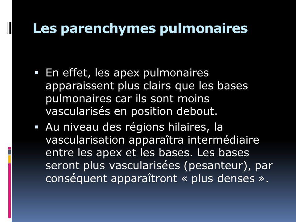 Les parenchymes pulmonaires En effet, les apex pulmonaires apparaissent plus clairs que les bases pulmonaires car ils sont moins vascularisés en position debout.