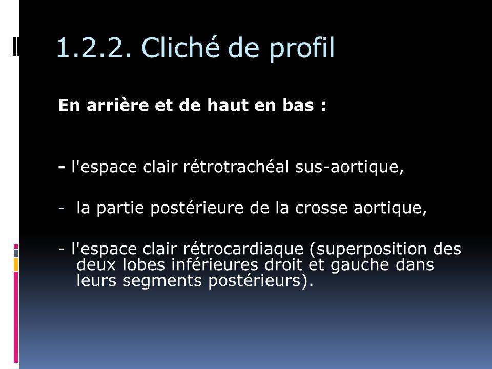 1.2.2. Cliché de profil En arrière et de haut en bas : - l'espace clair rétrotrachéal sus-aortique, - la partie postérieure de la crosse aortique, - l