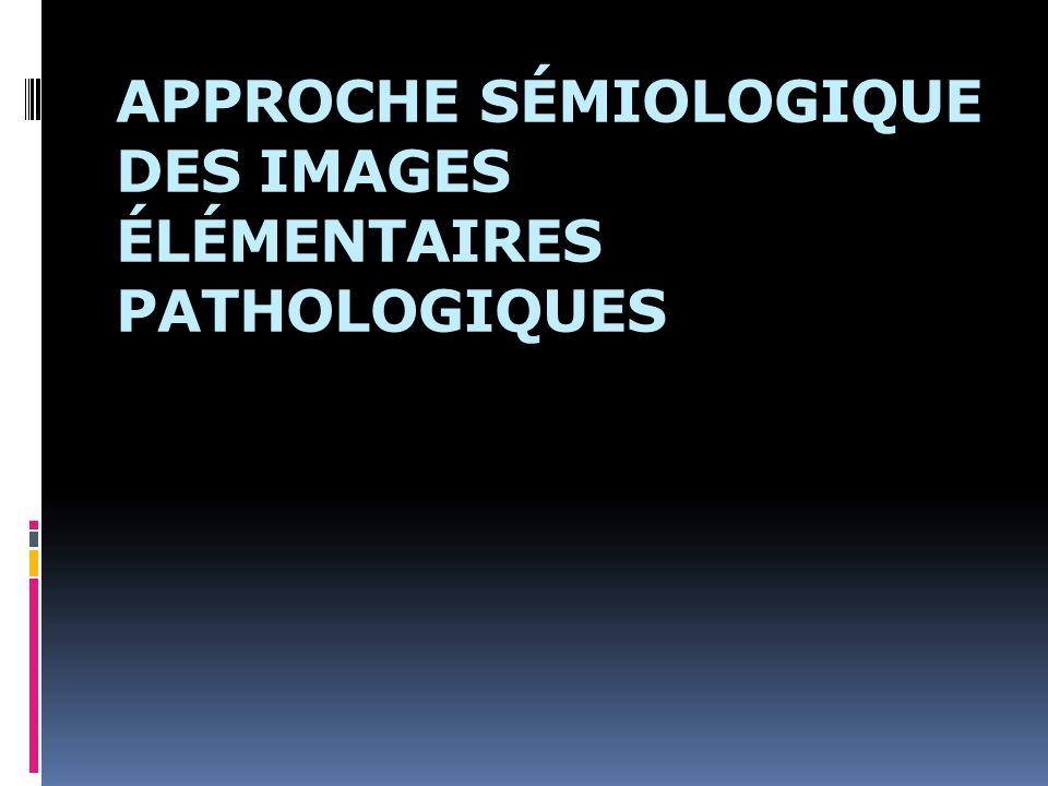 APPROCHE SÉMIOLOGIQUE DES IMAGES ÉLÉMENTAIRES PATHOLOGIQUES