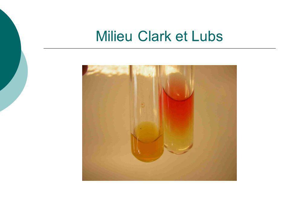Type de milieu Cest un milieu liquide qui permet lidentification des entérobactéries par létude du métabolisme glucidique.