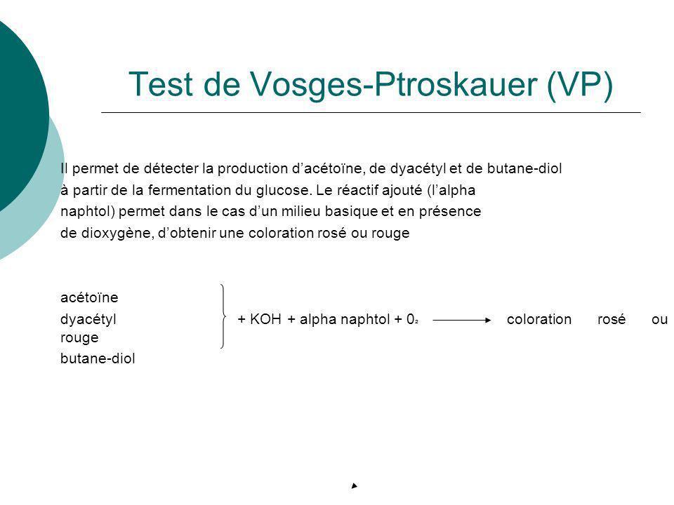 Test de Vosges-Ptroskauer (VP) Il permet de détecter la production dacétoïne, de dyacétyl et de butane-diol à partir de la fermentation du glucose. Le