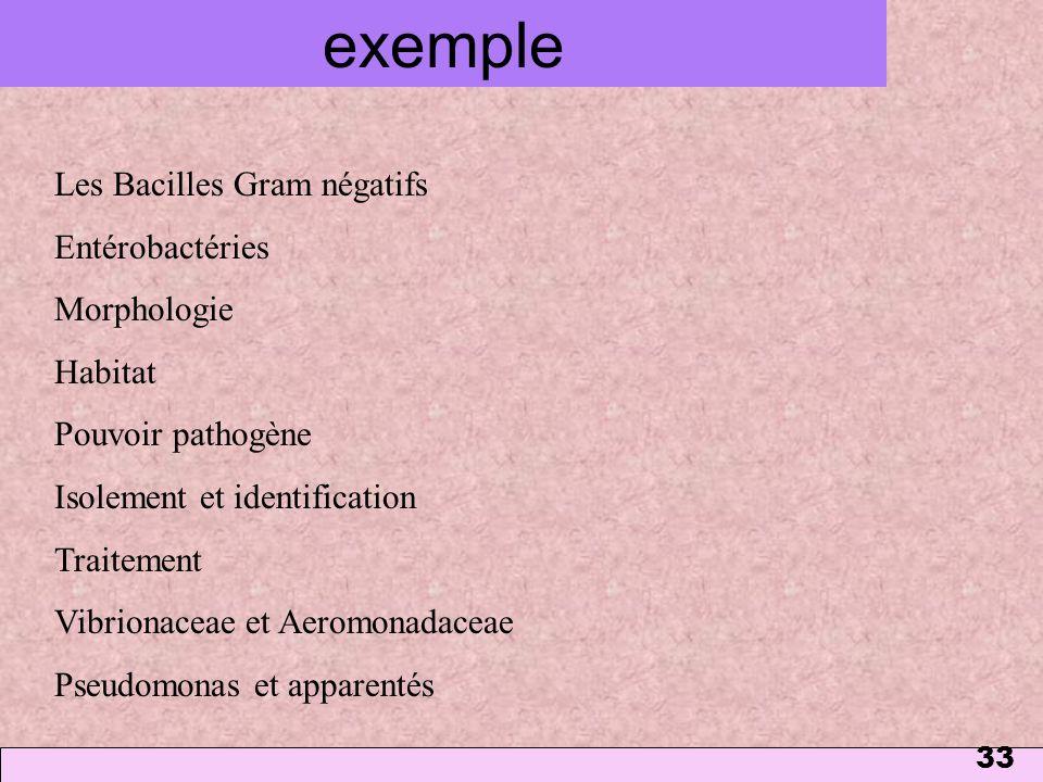 33 exemple Les Bacilles Gram négatifs Entérobactéries Morphologie Habitat Pouvoir pathogène Isolement et identification Traitement Vibrionaceae et Aer